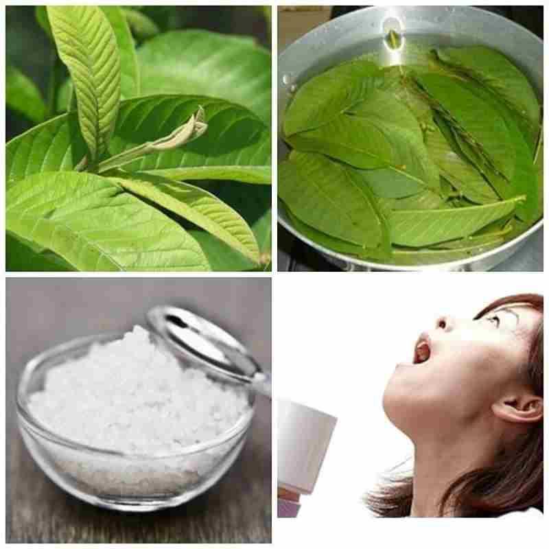 Các hoạt chất trong lá ổi giúp tiêu diệt mảng bám và khử mùi hôi hiệu quả.